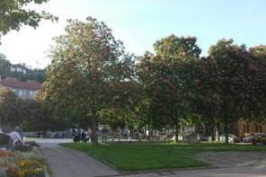 Der Marienplatz ist tot, es lebe der Schoettle-Platz